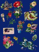 Vict floral pack 11_quaddles by quaddles