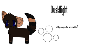 Yep a ref of duskflight by Pokemonrules1234
