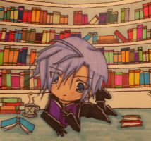 Zexion and his books by Skialdi