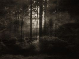 The Woods of Infinity I by Frostklinge
