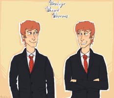 weasleys wizard wheezes by mjoelke