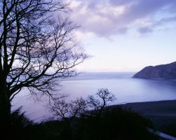 A February view in Lynmouth. by bared