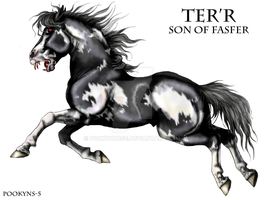 Ter'r the demon horse by pookyhorse