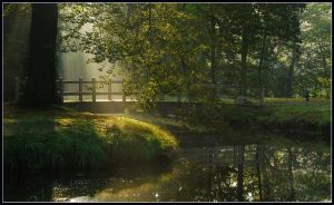 A bridge to light by jchanders