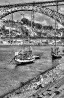 The River Douro 11 by abelamario