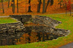 [2014-10-19] Paintography - Pond @ Letchworth by bryanwny