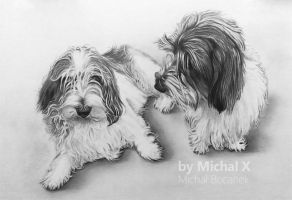 Pencil drawing - brothers (dog) :) by byMichaelX
