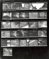 Contact sheet 2 by cleveroctober