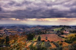 Fields of Vino HDR by ISIK5