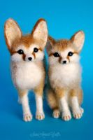 Fennec foxes by SaniAmaniCrafts