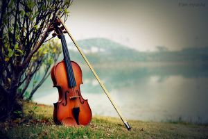 Violin by JewelryHyunAe