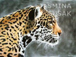 Drawn Jaguar by JasminaSusak