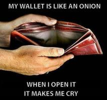 My Wallet Is Like A Onion... by Proud2BMe1936