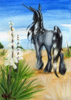 Yucca by Adalaire