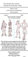 Drawing Tutorial: The Human Body- Basics by Dark-Momento-Mori