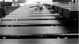 Xylophone Black and White by isthedaylong