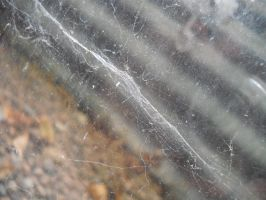 The Webs We Weave by remembermysoul