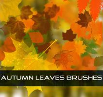 Autumn Leaves Brushes by UmbraDeNoapte-Stock