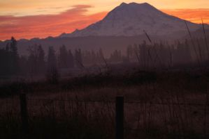 Rainier Sunrise by fotophi