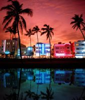 neon nightlife miami by Whatsome