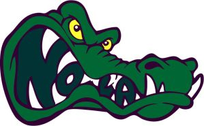 New Orleans Gators Primary by scox1313