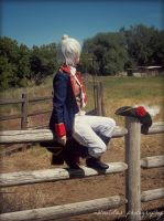 APH Prussia: Farmer's Borders by Leviathanlover