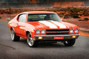 454 SS Chevelle by RaynePhotography