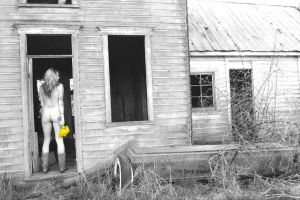 Yellow flowers and Decay by dislexicpalindrome