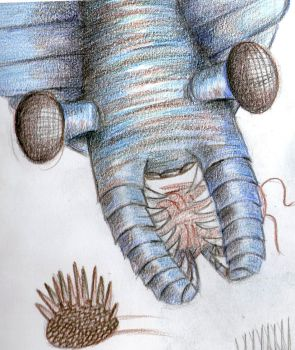 Anomalocaris WIP. by Leannee1993