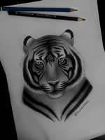 Tiger Study by NightmareQUEEN1998