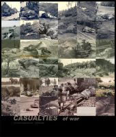 Casualties by CanisMajor