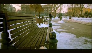Free bench for you by DrOfPhotography
