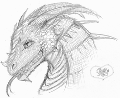 Dragon Head Sketch by A-McQ