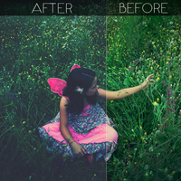 FREEBIE IV - Photoshop Action by ShekFilters