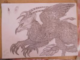 Griffon by Myusuran-blackwolf