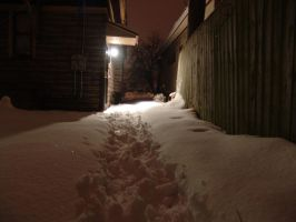 In To The Cold Night by Pyro82