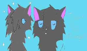 Thank You-Cinderpelt by starsweeps