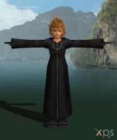 Roxas Organization for XNALara by LexaKiness