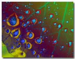 Water droplets of colour by Sipramiili