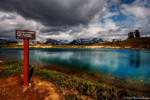 Swimming Permitted by IvanAndreevich