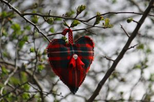 Love is in the air by Cantabrigian