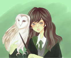 slytherin will help you on the way to greatness by theskyis