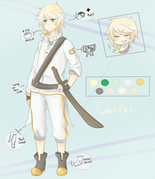 Ref Sheet: Carter by IronyStrikes
