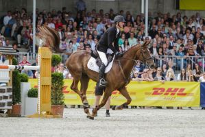 3DE Show Jumping Landing Phase Stock 60 by LuDa-Stock