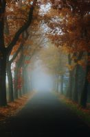 Lane in Autumn by Dewfooter