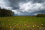 Spring Storm by fcarmo-photography