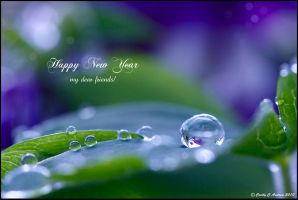 Happy New Year by CecilyAndreuArtwork