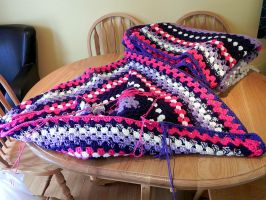 Working on our Afghan by Lou-in-Canada