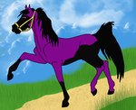 Contest Entry by horsefan12