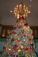 Christmas Tree by cynstock